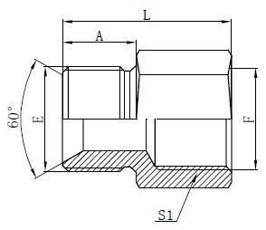 Dessin des adaptateurs de tuyau British Standard